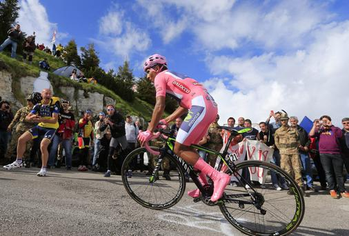 Movistar rider Nairo Quintana pushes through a corner on his way to winning the the uphill time trial on the 19th stage of the Giro d'Italia. Photo: LUK BENIES/AFP/Getty Images