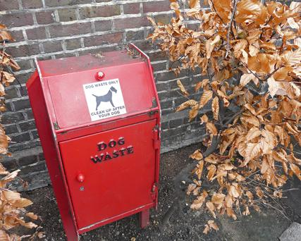 Bin for dog waste in a park