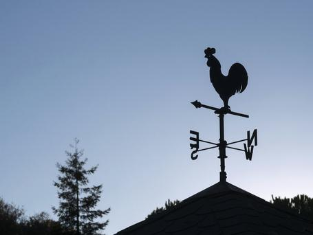 Wind vane (Stock photo)