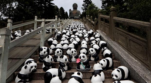 Part of the 1,600 paper pandas, created by French artist Paulo Grangeon