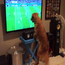 Georges, the football-loving dog, simply cannot contain his excitment as Argentina take on Bosnia & Herzegovina in the World Cup