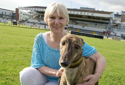 Carol Kendellen with her prized greyhound RazlDazl Al at Shelbourne Park Stadium. Photo: El Keegan