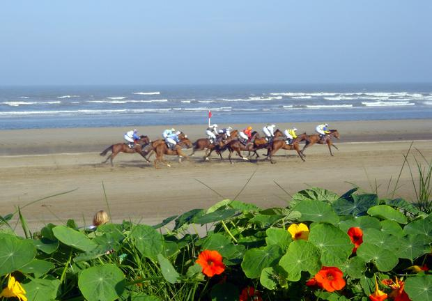 Laytown Races.jpg