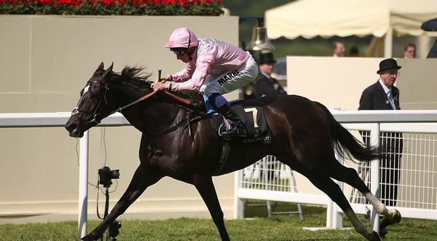 The Fugue, ridden by William Buick, on their way to victory in the Prince of Wales Stakes at Royal Ascot. Photo: Steve Parsons/PA Wire
