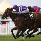 Leading Light ridden by Joseph O'Brien during the Gold Cup on Day Three of the 2014 Royal Ascot Meeting at Ascot Racecourse