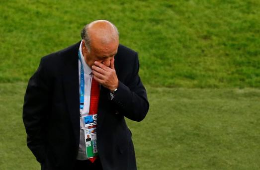 Spain's coach Vicente Del Bosque has received the backing of the Spanish Football Federation
