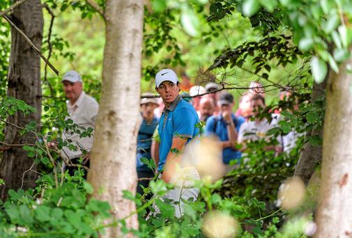 Rory McIlroy in trouble in the trees on the fourth after a wayward tee-shot. Photo: Brendan Moran / SPORTSFILE