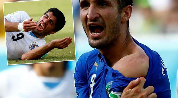 Giorgio Chiellini pulls open his shirt to show the bite mark to the referee after he clashed with Luis Suarez (inset)