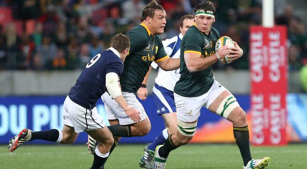 Marcel Coetzee of South Africa during the Test match between South Africa and Scotland at Nelson Mandela Bay Stadium