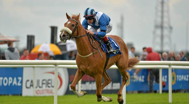 Tarfasha, with Pat Smullen up, on their way to winning the Topaz European Breeders Fund Fillies Maiden. Galway Racing Festival, Ballybrit, Co. Galway. Picture credit: Barry Cregg / SPORTSFILE