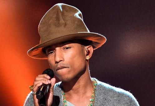 Pharrell WIlliams at Marley Park