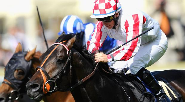 Slade Power has emerged as one of the best sprinters in recent years. Photo: Alan Crowhurst/Getty Images for Ascot Racecourse