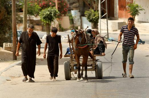 Palestinians, who fled their homes that are adjacent to the border with Israel, walk while others ride a horse cart as they make their way to stay at a United Nations-run school, in the northern Gaza Strip July 13, 2014. REUTERS/Ahmed Zakot