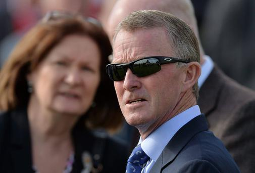 Former jockey Mick Kinane said Vintage Crop was an 'iconic stayer'. Photo: Matt Browne / SPORTSFILE