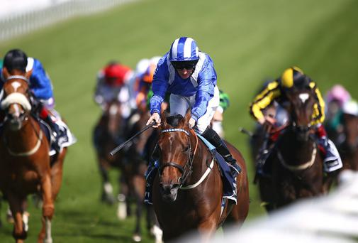 Epsom Oaks winner Taghrooda looks set to renew rivalry with Tarfasha at the Curragh on Saturday. Photo: Charlie Crowhurst/Getty Images