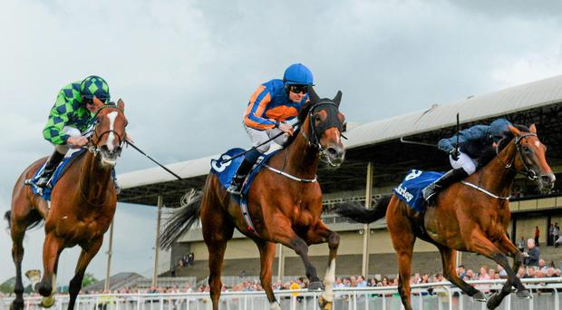 Bracelet, centre, with Colm O'Donoghue up, on their way to winning the Darley Irish Oaks from second place Volume, with Kevin Manning up, right, and third place Tapestry, with Joseph O'Brien up. Picture credit: Matt Browne / SPORTSFILE