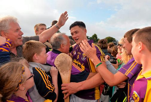 Lee Chin is acclaimed by supporters after Wexford's win over Waterford. SPORTSFILE