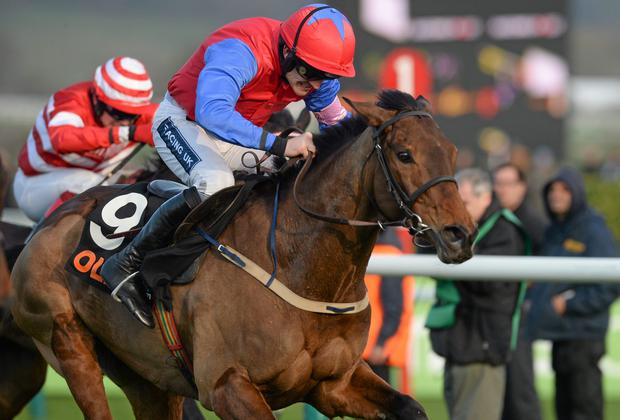 Now that Quevega has departed to the breeding sheds, the OLBG Mares' Hurdle will become a Grade One event. Photo: Barry Cregg / SPORTSFILE