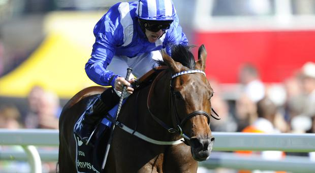 Taghrooda - with Paul Hanagan - could start the King George VI & Queen Elizabeth Stakes at Ascot as favourite. Photo: Alan Crowhurst/Getty Images