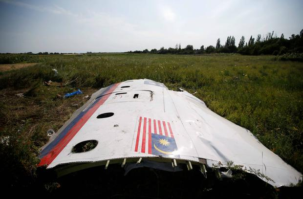 A piece of the wreckage is seen at a crash site of the Malaysia Airlines Flight MH17 near the village of Petropavlivka (Petropavlovka), Donetsk region. Reuters