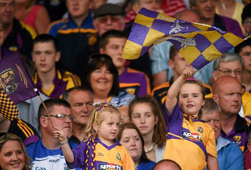 Enthusiastic Wexford fans have given their team great support this summer