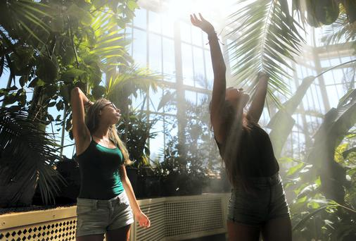 Italian Students cool off under the sprinklers in the Palm House in the National Botanic Gardens Dublin on one of the hottest days so far this year. PIC: MAXWELLS/JULIEN BEHAL