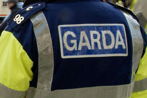 Gardai appeal for information in hit-and-run