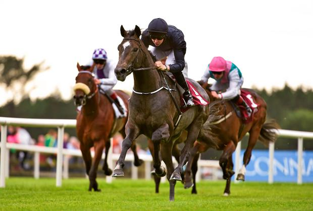 Joseph O'Brien steers odds-on favourite Jamaica to a convincing victory in the claregalwayhotel.ie juvenile maiden at Galway. Photo: Barry Cregg / SPORTSFILE