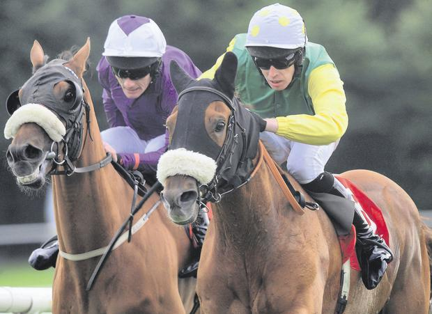 QUICK JACK & Stephen Clements (Green Yellow Sleeves) Win the Connaucht Hotel Handicap from GRECIAN TIGER & Roger Quinlan (Purple) for trainer Tony Martin.(WWW.HEALYRACING.IE)