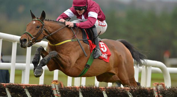 'Road To Riches has a touch of class, he stays well and he has been pleasing everyone with his work at home.' Photo: Barry Cregg / SPORTSFILE