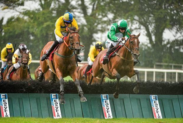 Cacheofgold (right), with Jonathan Burke up, jumps the last alongside Supreme Vic (Shane Shortall) on their way to winning at Galway. Cacheofgold (12/1) was one of four winners tipped up by Wayne Bailey for a brilliant 233/1 accumulator. Photo: Barry Cregg / SPORTSFILE