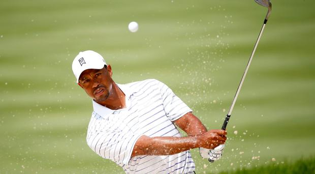 Tiger Woods has won eight times at the Firestone Country Club. Photo: Sam Greenwood/Getty Images