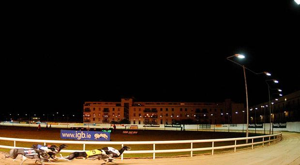 The Night of Stars will be returning to Shelbourne Park this November. Picture credit: Stephen McCarthy / SPORTSFILE
