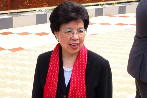 Margaret Chan, president of the World Health Organization, arrives for a conference on the Ebola virus in Conakry August 1, 2014