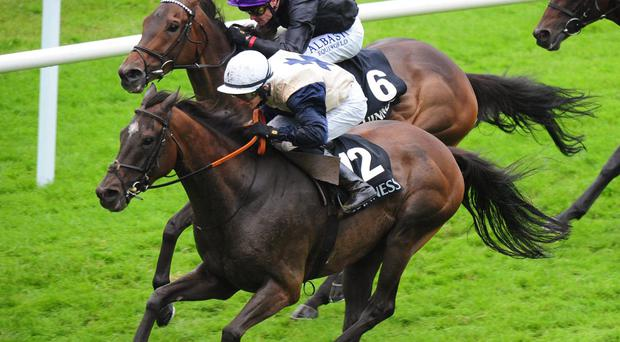 Artful Artist, with Sean Corby up (right), goes on to win the Guinness Handicap in Galway. Photo credit: Pat Healy/PA Wire