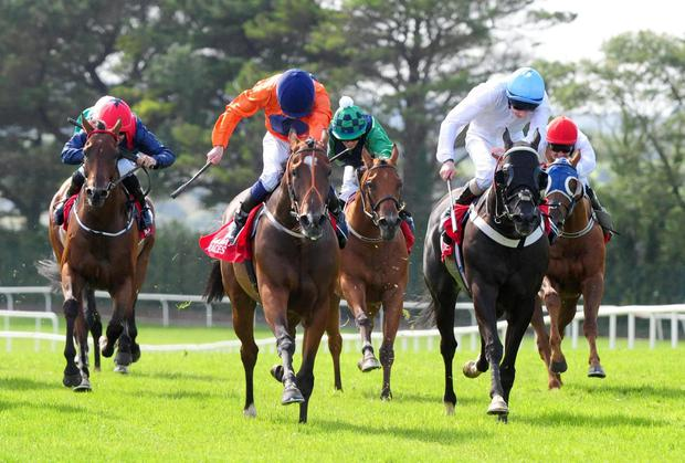 Baraweez and Colm O'Donoghue (in orange) dig deep to hold off fellow raider Jack's Revenge to win yesterday's feature at Galway. Photo credit should read: PA Wire