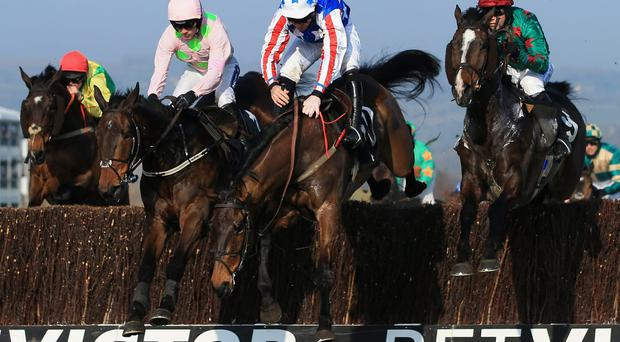 Henry de Bromhead's Special Tiara (centre) is arguably the most interesting runner at Cork. Photo: Richard Heathcote/Getty Images