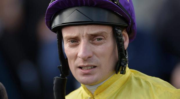 Jockey Declan McDonogh will team up with Streetcar To Stars for the Ballyroan Stakes at Leopardstown. Photo: Matt Browne / SPORTSFILE