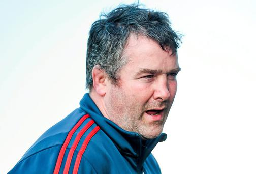 Munster coach Anthony Foley has been impressed by the performances of the Irish women's World Cup team in France. Picture credit: Diarmuid Greene / SPORTSFILE