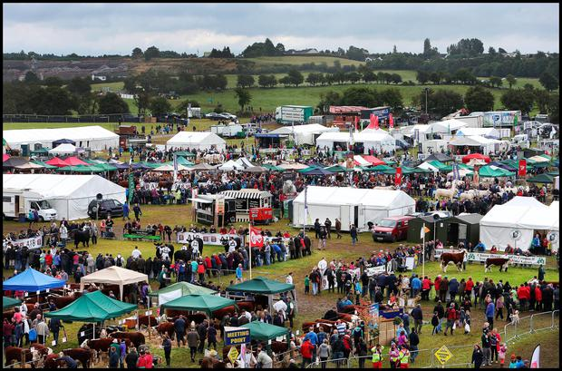 The Tullamore Show . Pic Steve Humphreys 10th August 2014.