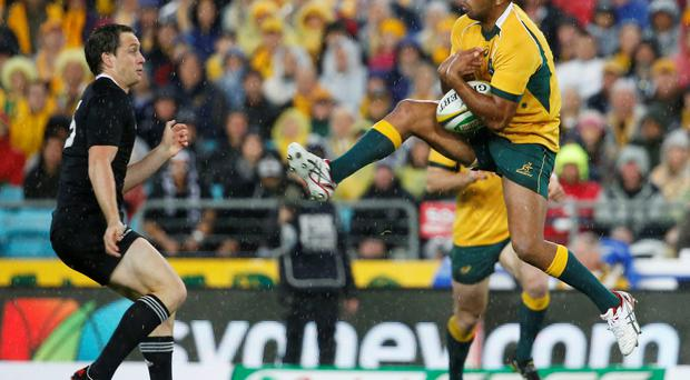 Kurtley Beale (R) of Australia's Wallabies receives a kick against New Zealand's All Blacks during their Rugby Championship match in Sydney