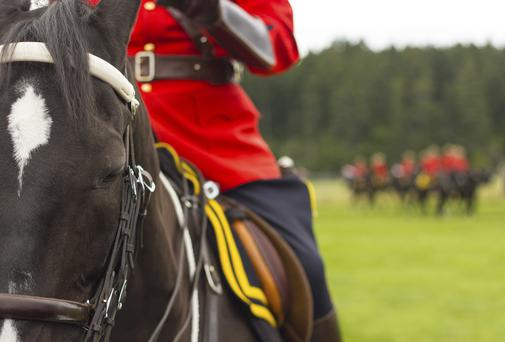 SNAP HAPPY: Please don't feed the Mounties