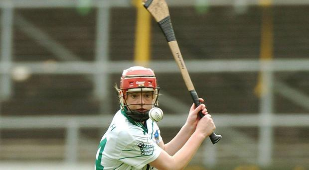 Niamh Mulcahy in action for Limerick