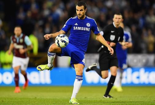 Now at the heart of Chelsea's midfield, Cesc Fabregas is threatening to pick up where he left off in his best years at Arsenal. Photo: Laurence Griffiths/Getty Images