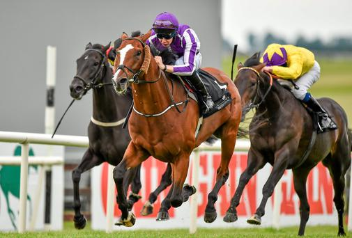 Leading Light, with Joseph O'Brien up, gallops away from the field to capture the Irish St Leger Trial at the Curragh