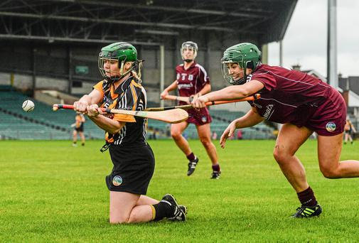 Shelly Farrell, Kilkenny, in action against Heather Cooney, Galway