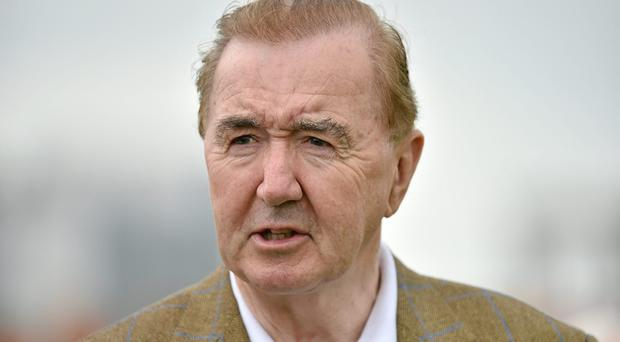 Tested will be among the runners for Dermot Weld in the Fairybridge Stakes at Tipperary. Photo: Barry Cregg / SPORTSFILE