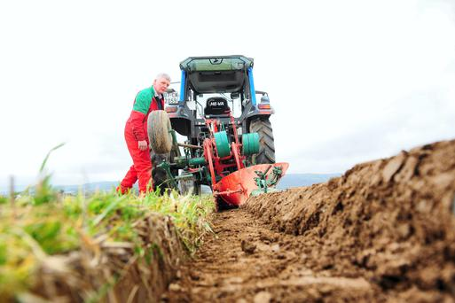 Eamonn Tracey added a further accolade to his ploughing honours over the weekend, with the conventional class at the World Ploughing Championships in Bordeaux, France at the weekend. Team-mate John Whelan came third in the reversible class.