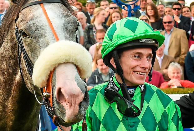 Ryan Moore underlined his pre-eminence by steering the Grey Gatsby to victory over Australia. Picture credit: Matt Browne / SPORTSFILE