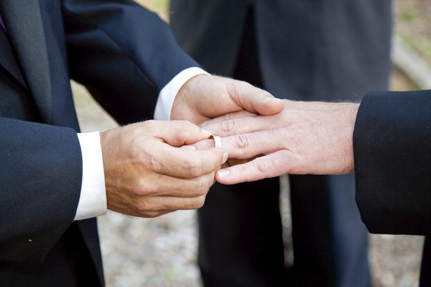 The referendum on same-sex marriage will be held in May